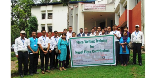 Flora Writing Training 2016