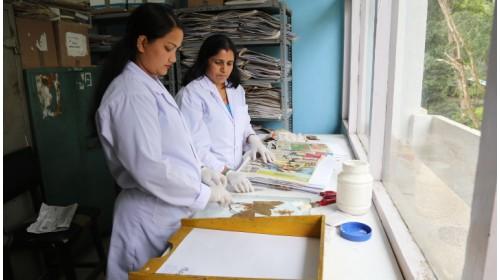 Mounting of Herbarium Specimens