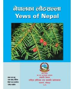 Yews of Nepal
